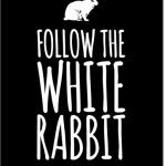 Follow the White Rabbit plakat