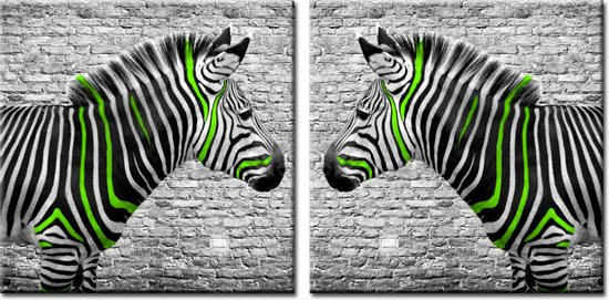 obraz zielone zebry