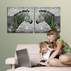 zebra obraz