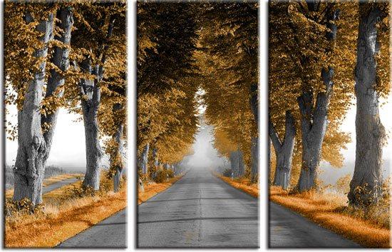 obraz drogi wśród starych drzew