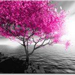 różowego drzewa obraz