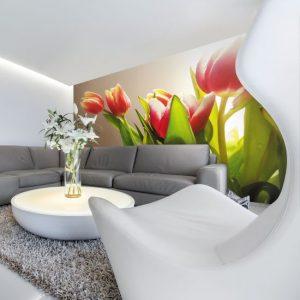tulipany na fototapecie