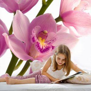 tapeta blado różowa