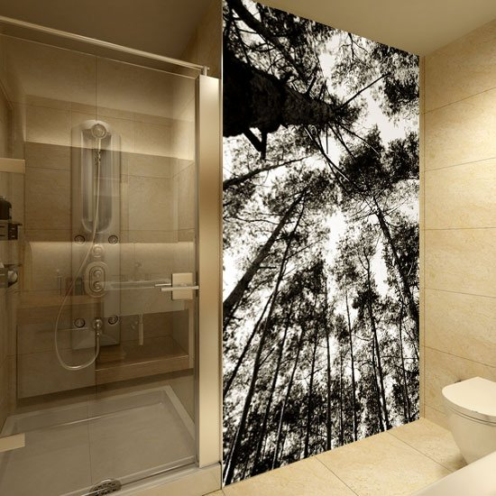 Fototapeta W Sepii Drzewa