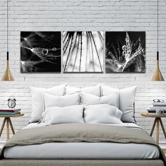 Obraz Z Roślinami I Kroplami Rosy W Kolorach Czarno Białych