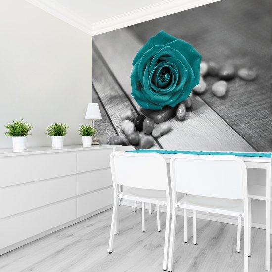 fototapety z różą