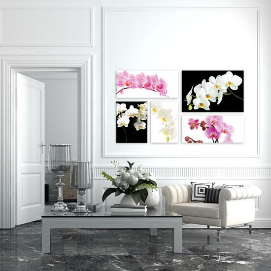 obrazy z orchideami