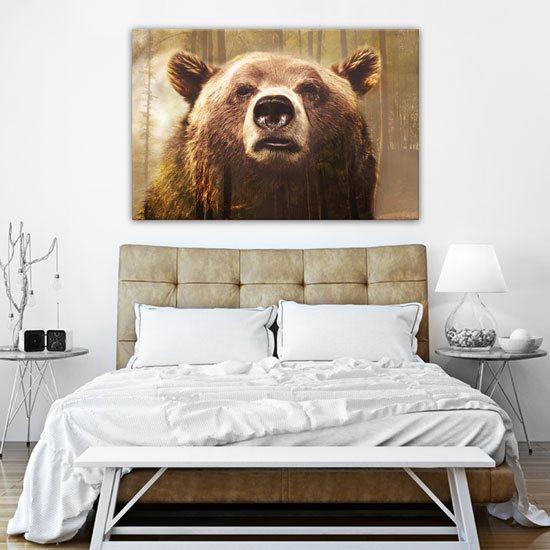 obrazy z niedźwiedziem