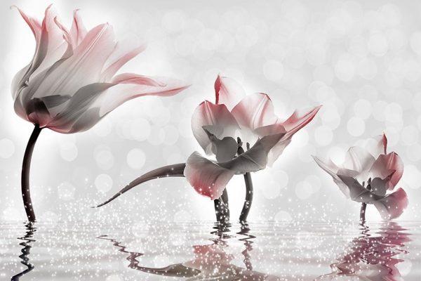 tapeta trzy tulipany