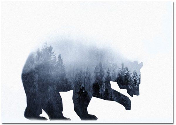 plakat z niedźwiedziem
