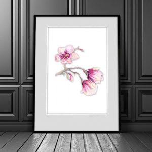 plakat z kwiatem na ścianę do salonu