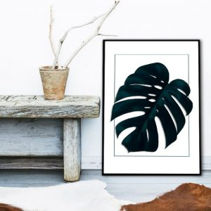 modny plakat do sypialni - monstera