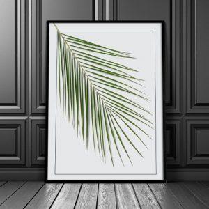 Plakat zielony liść