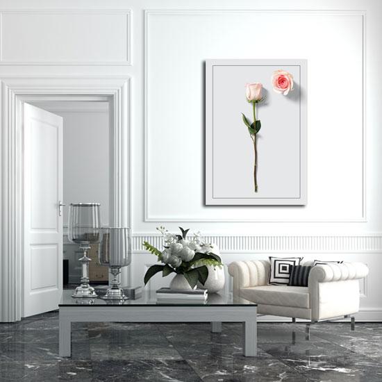 Plakat z różą