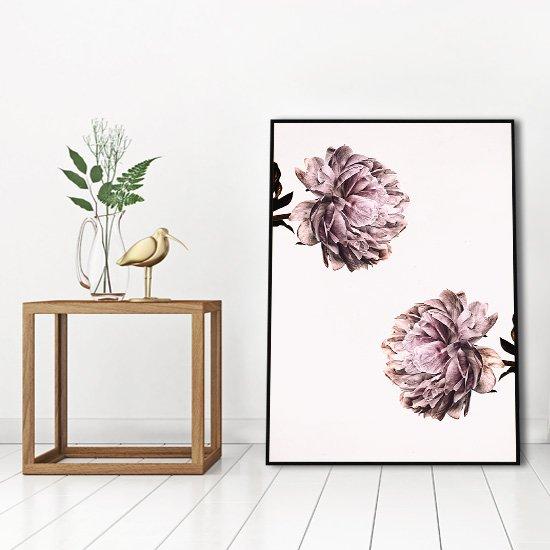 plakaty z florą