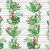 tapety z roślinami