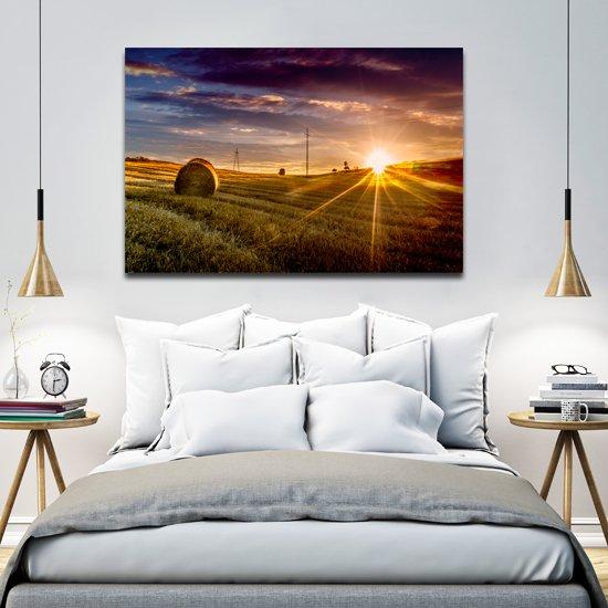 pole i słońce