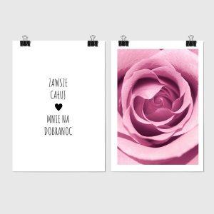 róża na plakacie