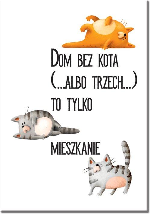 plakat z napisem o kotkach