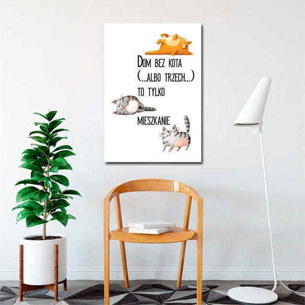 trzy kotki nap plakacie