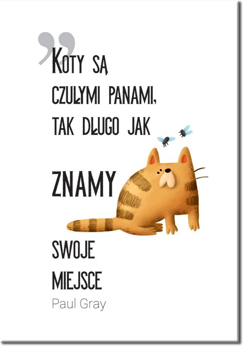 plakat z motywem kotów i czarnego napisu