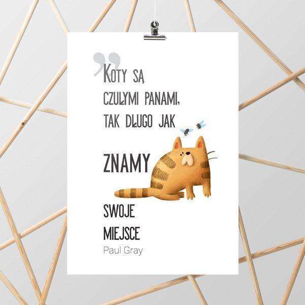 polski napis o kotach na plakacie