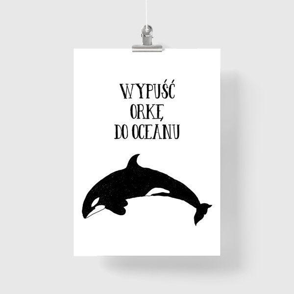 czarna orka na plakacie