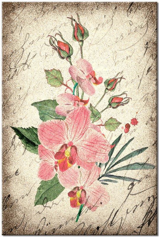 pionowy obraz z kwiatami