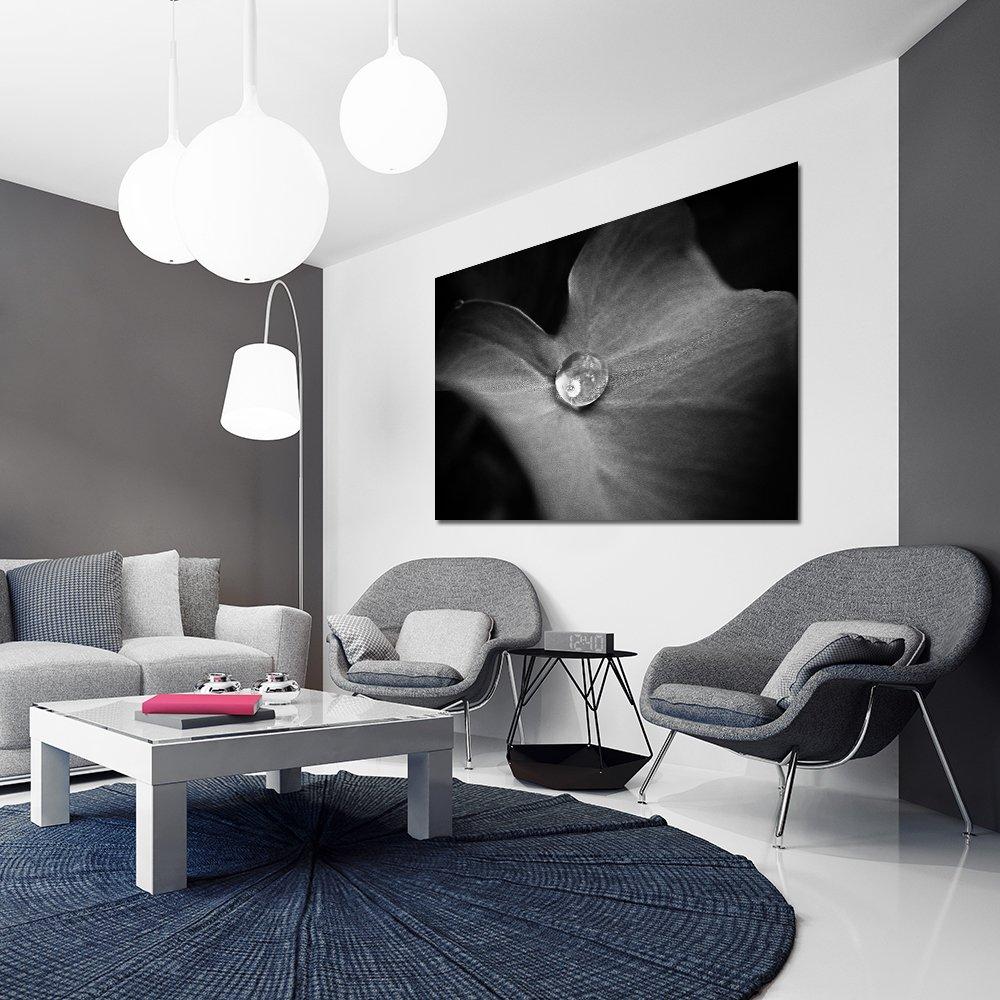 Biało Czarny Obraz Do Salonu Z Motywem Liścia I Kropli