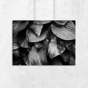 ścienna dekoracja z liścmi