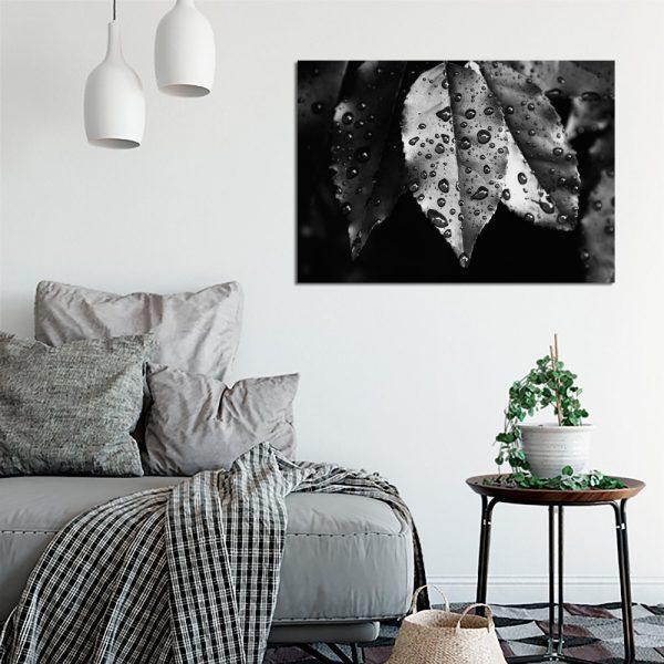 biało-czarne liście na obrazie