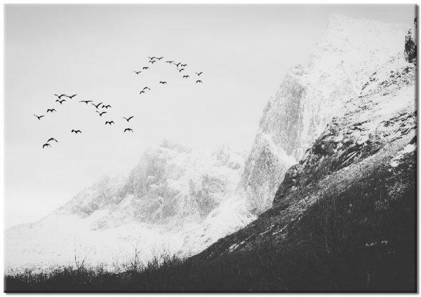 biel i czerń jako plakat z górami