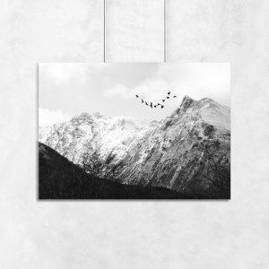 ptaki i góra jako plakat