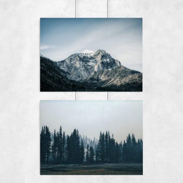 góry i las na plakatach