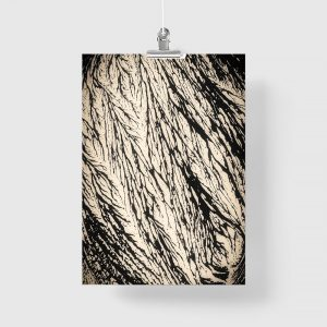 abstrakcja przyrodnicza na plakacie