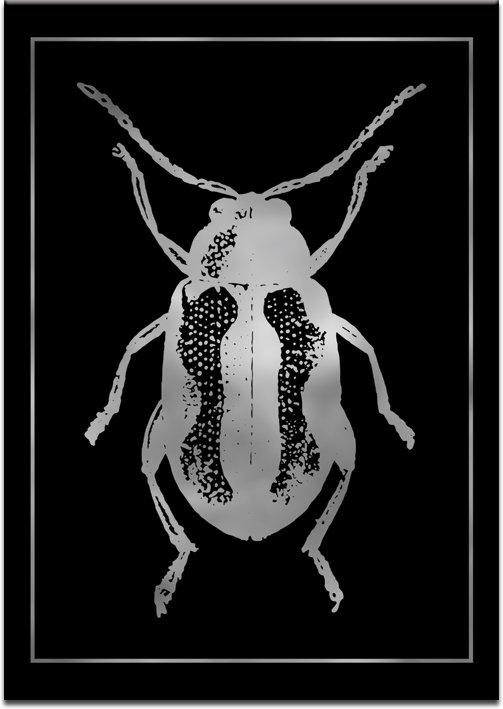 czarne tło plakatu z żukiem