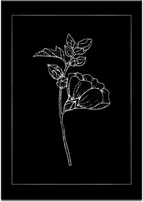 czarne tło na plakacie srebrnym