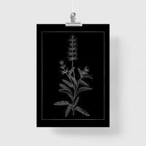 srebrny kwiat jako plakat