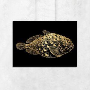 motyw złotej rybki na plakacie