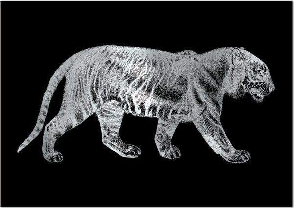 plakat ze srebrnym tygrysem