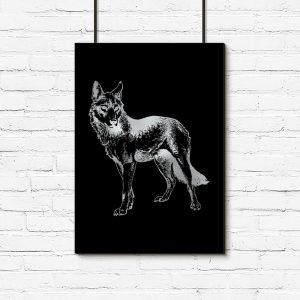 srebrny wilk jako plakat