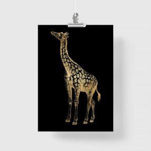 czarne tło z żyrafką