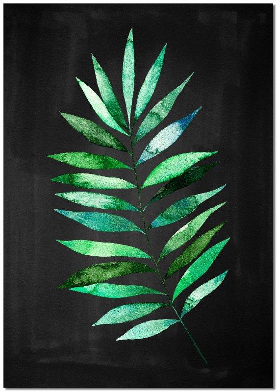 czarne tło obrazu z liściem