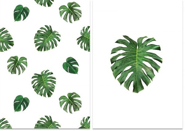 obrazy botaniczne