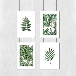 zestaw plakatów botanicznych