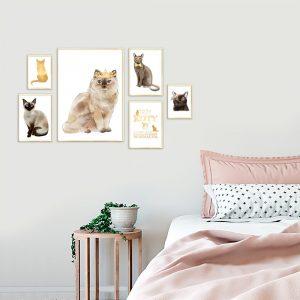 galeria złotych plakatów z kotami