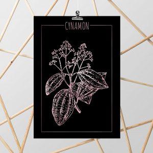 plakaty z cynamonem