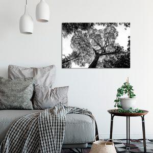 Obraz czarno biały do sypialni