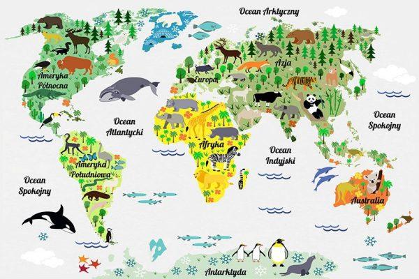 Kolorowa mapa świata w postaci fototapety