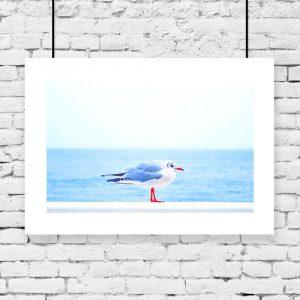 Niebieski plakat z ptakiem morskim
